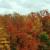 Logo del gruppo di Painted Seasons